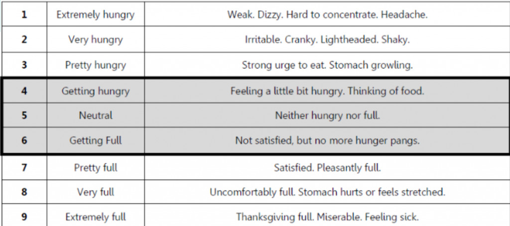 Hunger Fullness scale for mindful eating